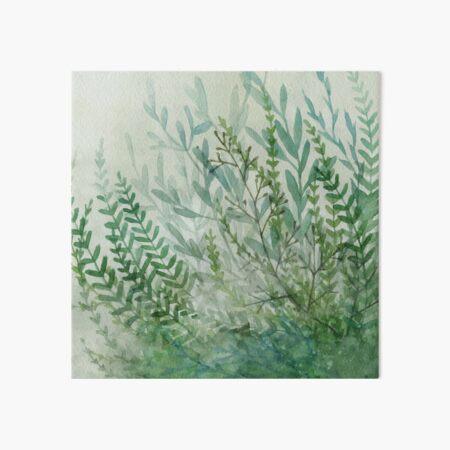 Ferns and Fog Art Board Print