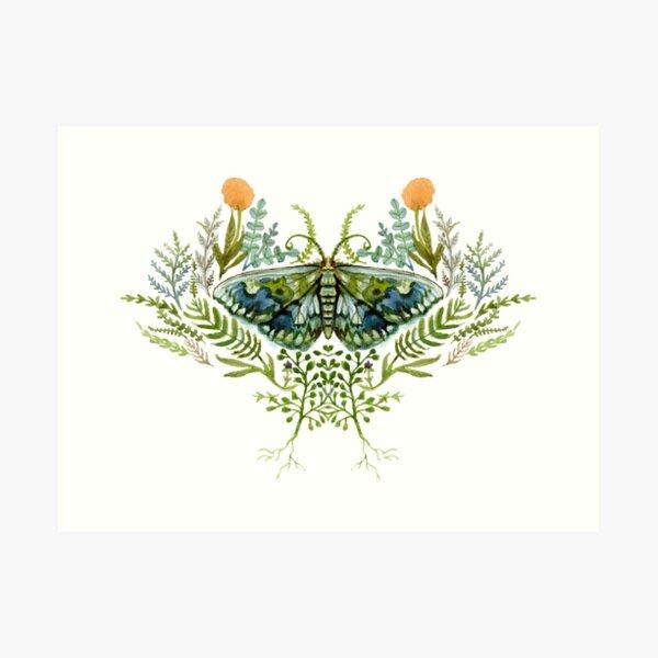 Moth with Plants Art Print