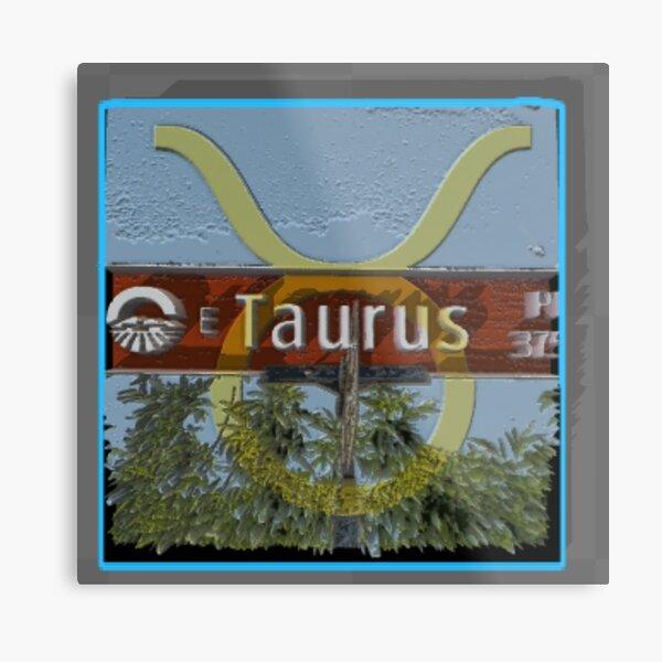 Taurus Place Metal Print