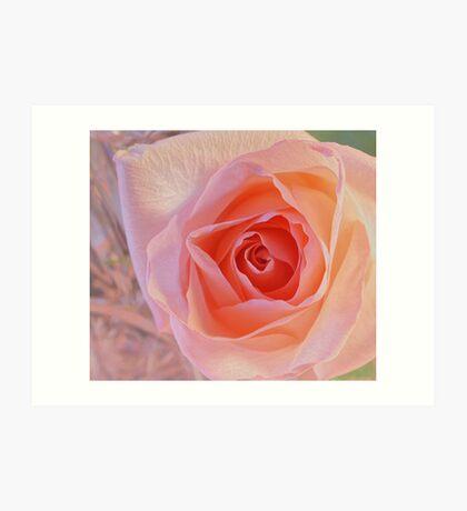 ***  JOYFUL DELIGHT ~ PINK ROSE  *** Art Print