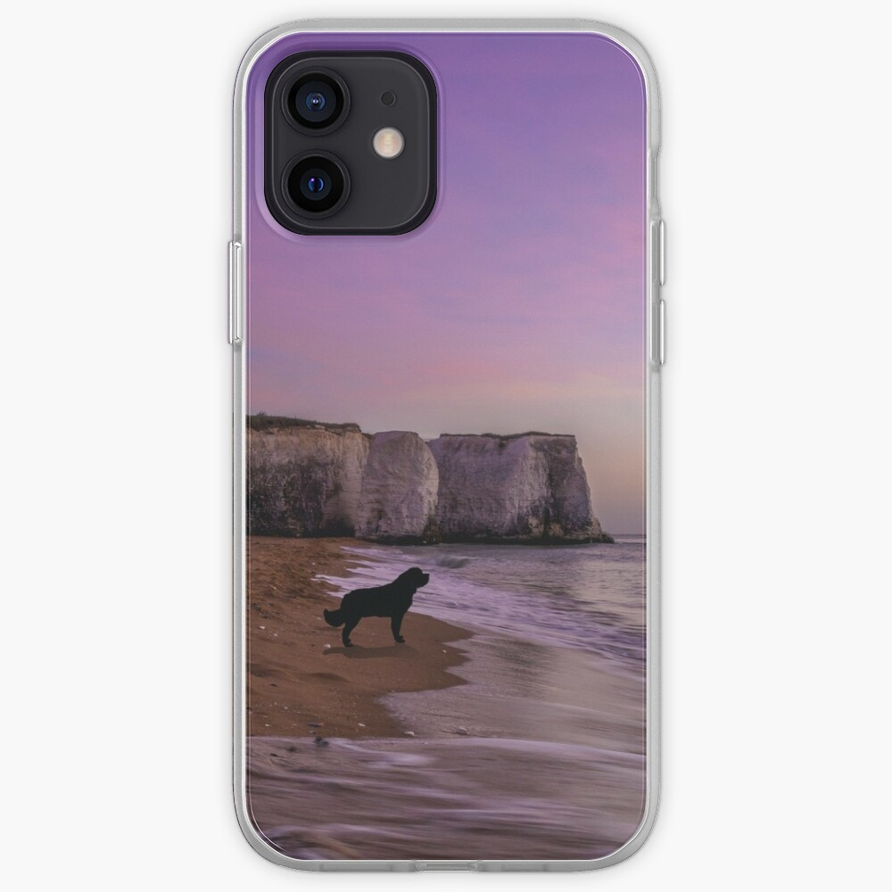 Newfoundland dog at Sunset on the Beach iPhone Case & Cover