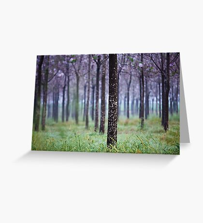 lines of trees  Greeting Card