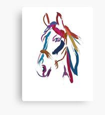 Cool t-shirt Horse Colour me beautiful Canvas Print