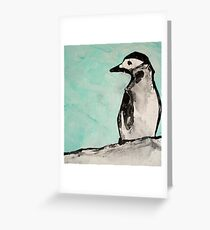 chin strap penguin  Greeting Card