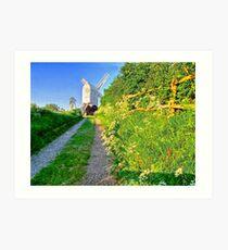 Jill Windmill - HDR Art Print