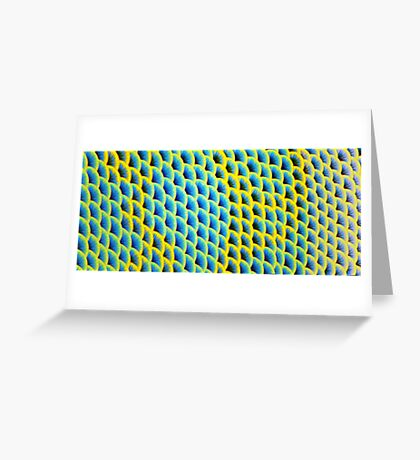 Blue-faced Angelfish  Greeting Card