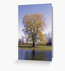 Willow by the Pond Greeting Card