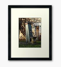 Water Well, Graz, Austria Framed Print