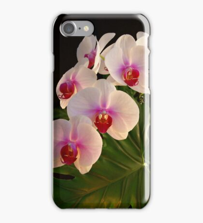 ***DELICATE GRACE ~ ORCHID PHALAENOPSIS*** iPhone Case/Skin