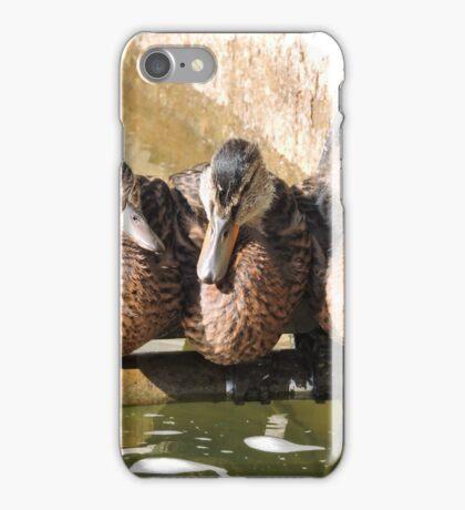 A Perch for Three iPhone Case/Skin