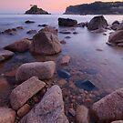 Poretelet Bay - Jersey  by Alicja Ludwikowska