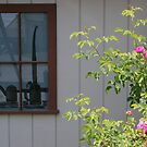 Old Rustic Window with Rose by Sandra Lee Woods