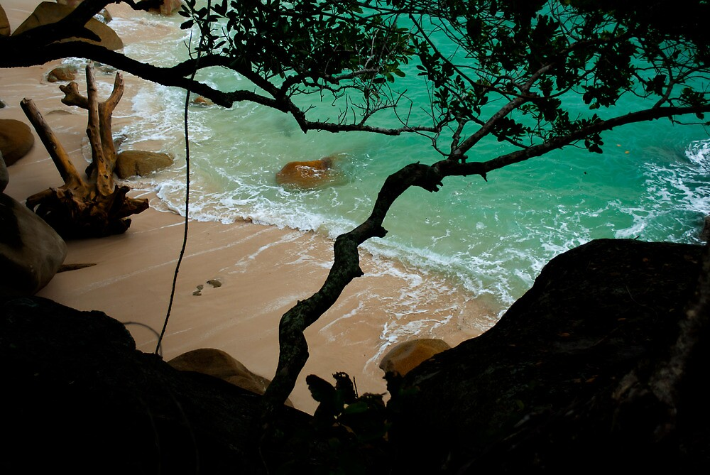 Quot Nudey Beach Fitzroy Island National Park Quot By Asskwoo