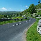 The Road to Bishopdale by WatscapePhoto
