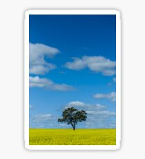 Lone tree in a field of canola Sticker