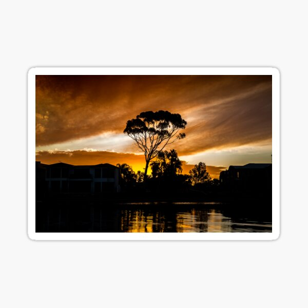 Golden Colour Sunset and gumtree with refractions in river water Sticker