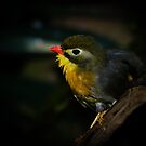 Yellow Neck! by vasu
