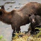 Mum & Bub by SusanAdey
