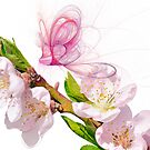 Blossom and Butterfly by shalisa