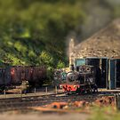 Tanfield Toy Train by Great North Views