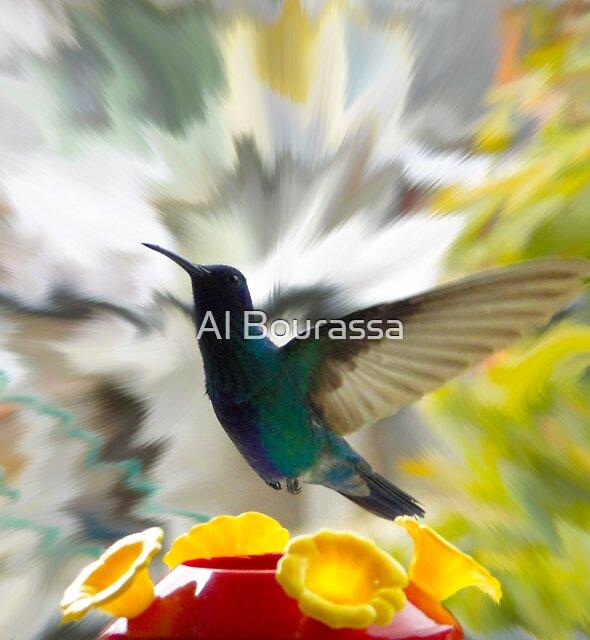 Hummingbird Series IX by Al Bourassa