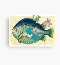 A puzzled fish Canvas Print
