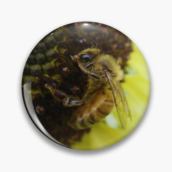 Bee on a Sunflower Pin