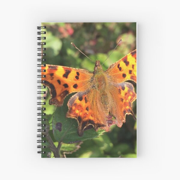 Moth/Butterfly in the Wild Spiral Notebook