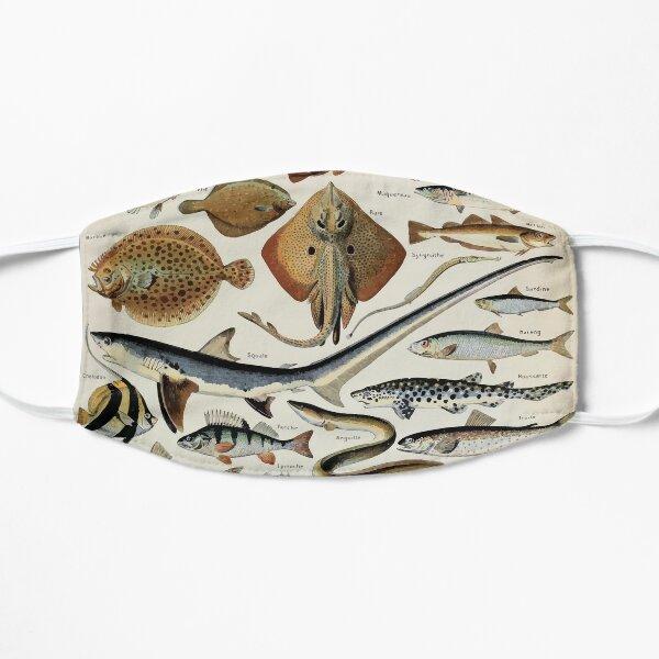 Adolphe Millot poissons pour tous Small Mask