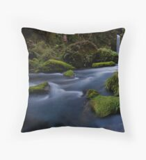 Omanawa River Run Rocks Throw Pillow