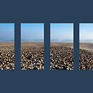 East Beach Pebble View by Alastair Creswell