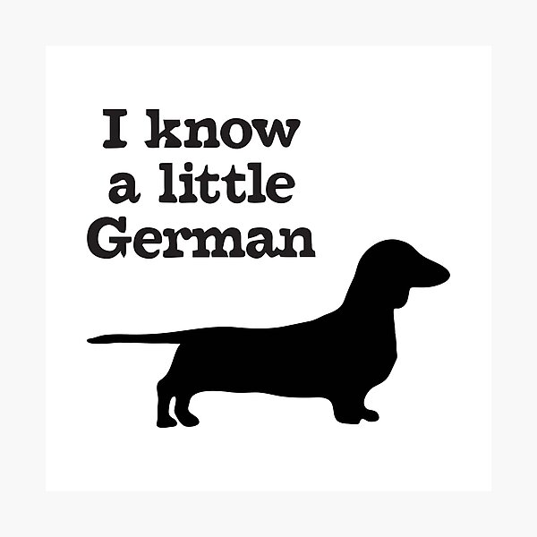 I Know A Little German Dachshund Photographic Print