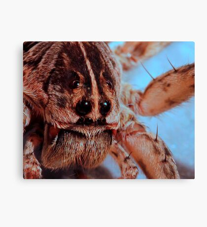 That Face! Canvas Print