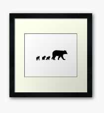 Mama Bear and her Cubs.  Framed Print