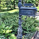 The Garden Mailbox by Sandra Lee Woods