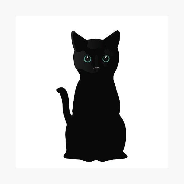 Kitten Eyes Photographic Print