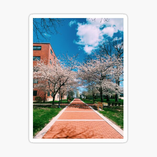 Providence College Pathway Sticker