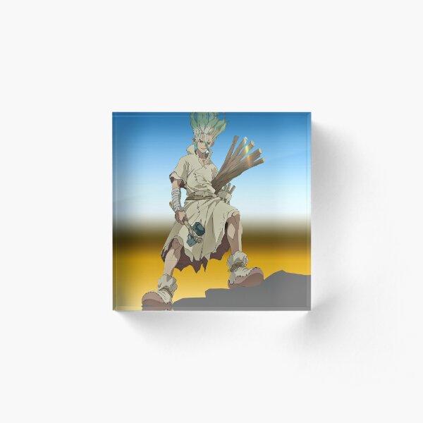 Dr stone Acrylic Block