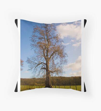Tree (Imaginative eh :) Throw Pillow