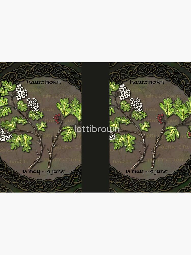 Celtic Tree Calendar - Hawthorn by lottibrown