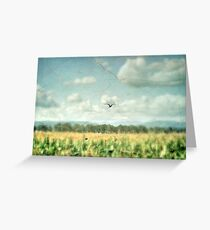Summer Corn Greeting Card