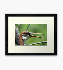 I have also grown bigger and lost my electricity (spiked hairdo!) Framed Print