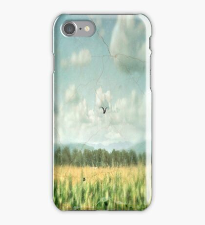 Summer Corn iPhone Case/Skin
