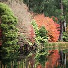 Autumn by the lower pond by Jack Wright