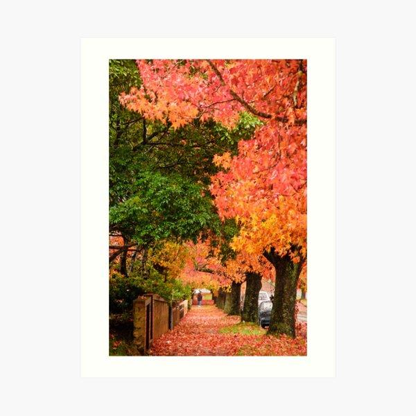 Blackheath Autumn Art Print