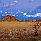 Untamed Land by Jill Fisher