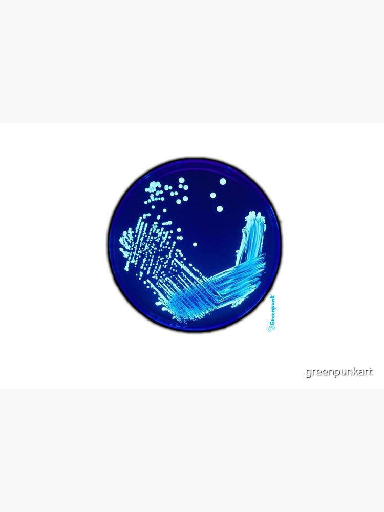 Petri by greenpunkart