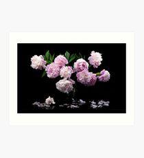 Still life with beautiful pink peonies Art Print