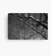 it seems just awful. Canvas Print