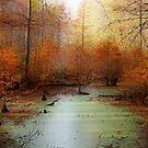 Heron Pond - Autumn by Sandy Keeton